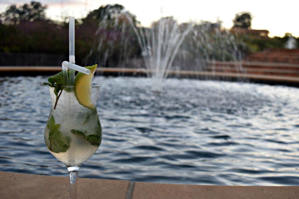 Northern-Niche-Wynard-Hall-Gin-Garden-Event