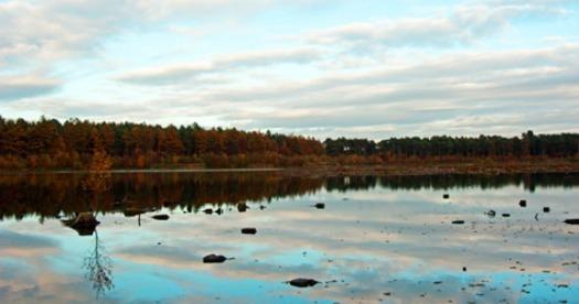 northern-niche-blakemere-autumn-walks
