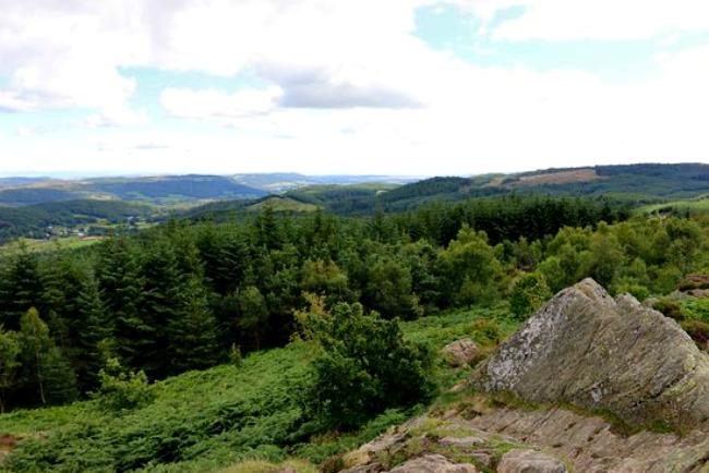 northern-niche-carron-crag-autumn-walks