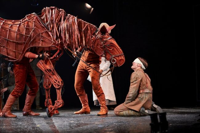 northern-niche-autumn-theatre-2017-war-horse