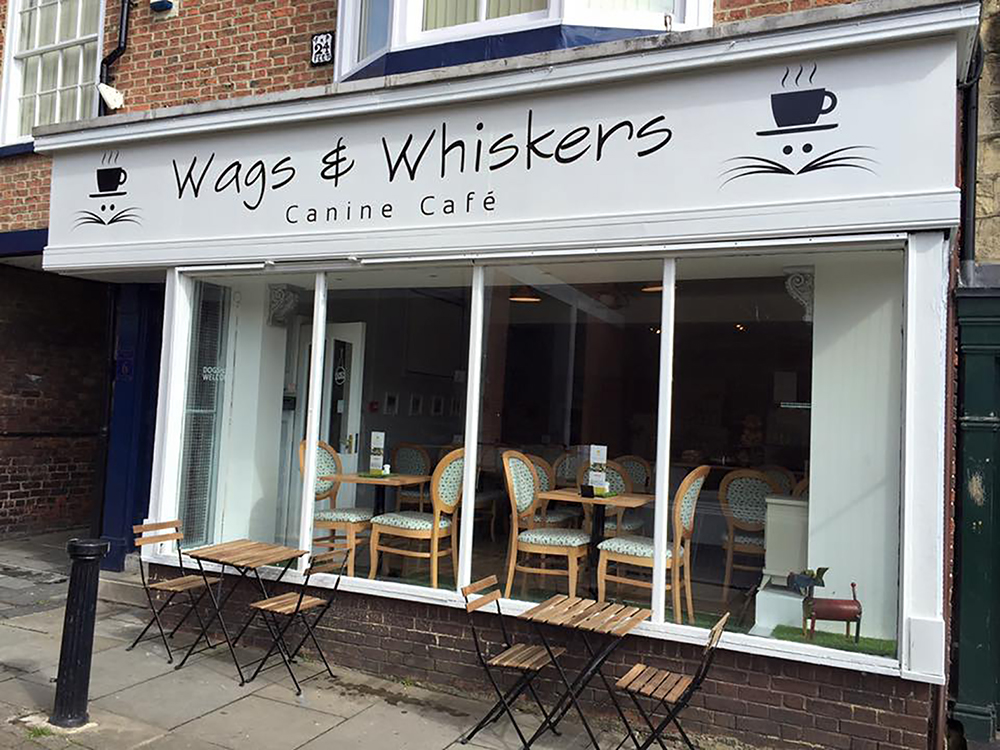 northern-niche-dog-cafes-wags-whiskers